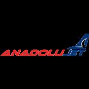 Anadolujet, Kocaeli ve Çorlu'dan Ankara'ya uçuyor