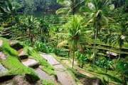 Yeryüzündeki cennet Bali ile ilgili bilmeniz gereken 6 şey