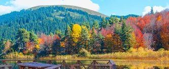 Sonbaharın keyfini çıkarabileceğin EN güzel 7 yer