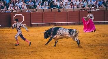 Sevilla'da gezilecek yerler