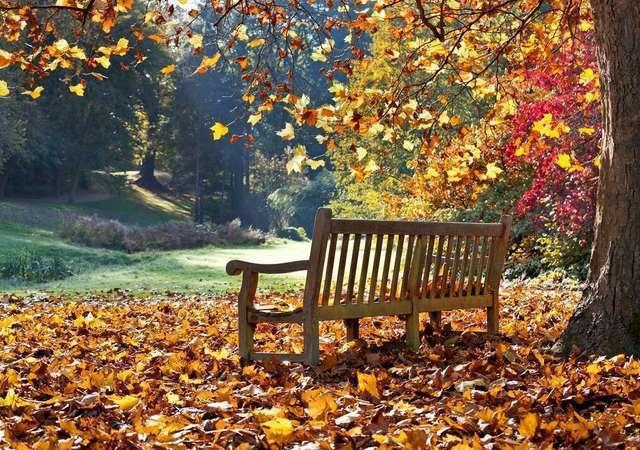 Sonbaharda İstanbul'da yapılacak en güzel 10 aktivite