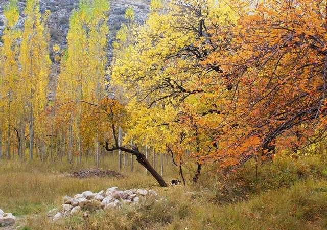 Sonbaharın keyfini çıkarabileceğiniz en güzel 7 yer