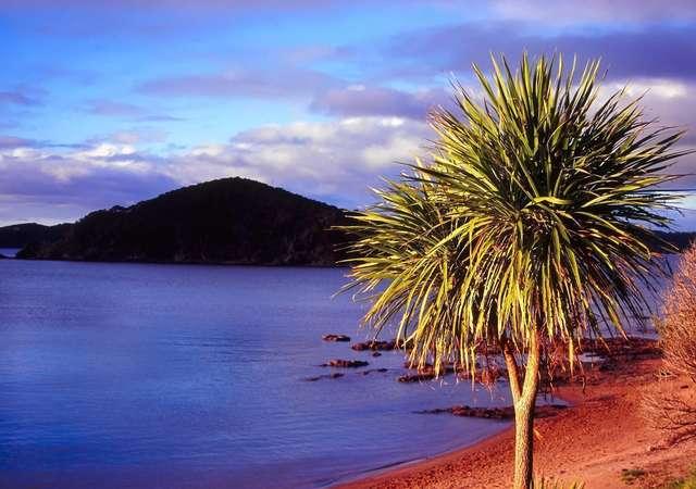 Yeni kıta Zelandiya