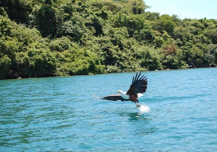 Malavi Gölü