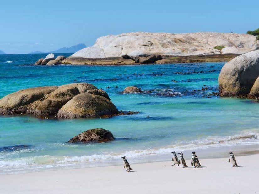 6- Cape Town