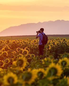 Doğal Fotoğraf Stüdyoları
